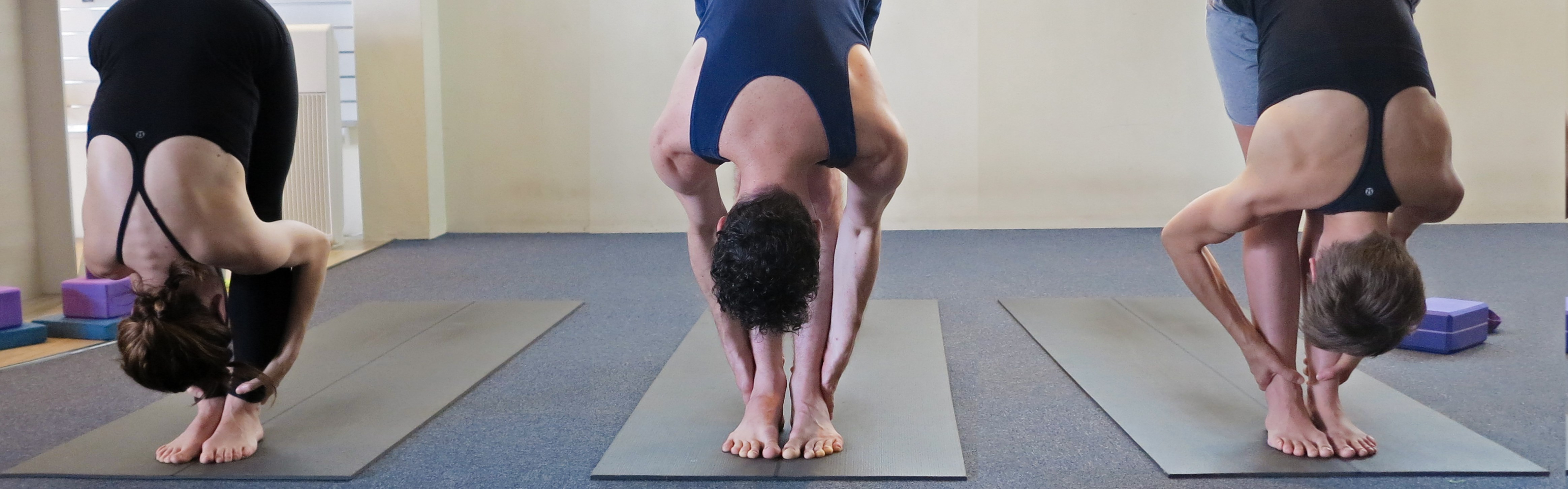 intermediate-level-teacher-training-knoff-yoga